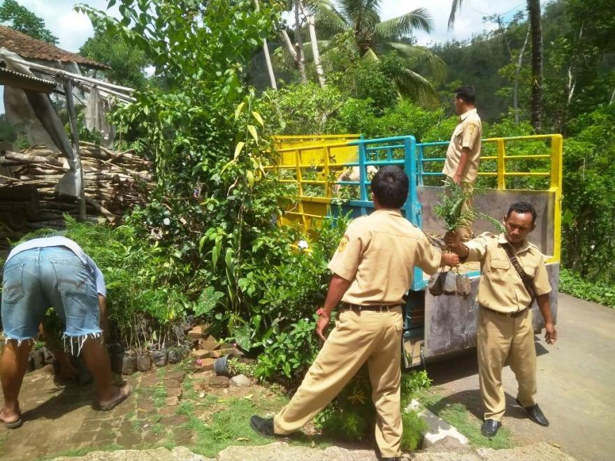 Image : Konservasi Alam Desa Kalirejo